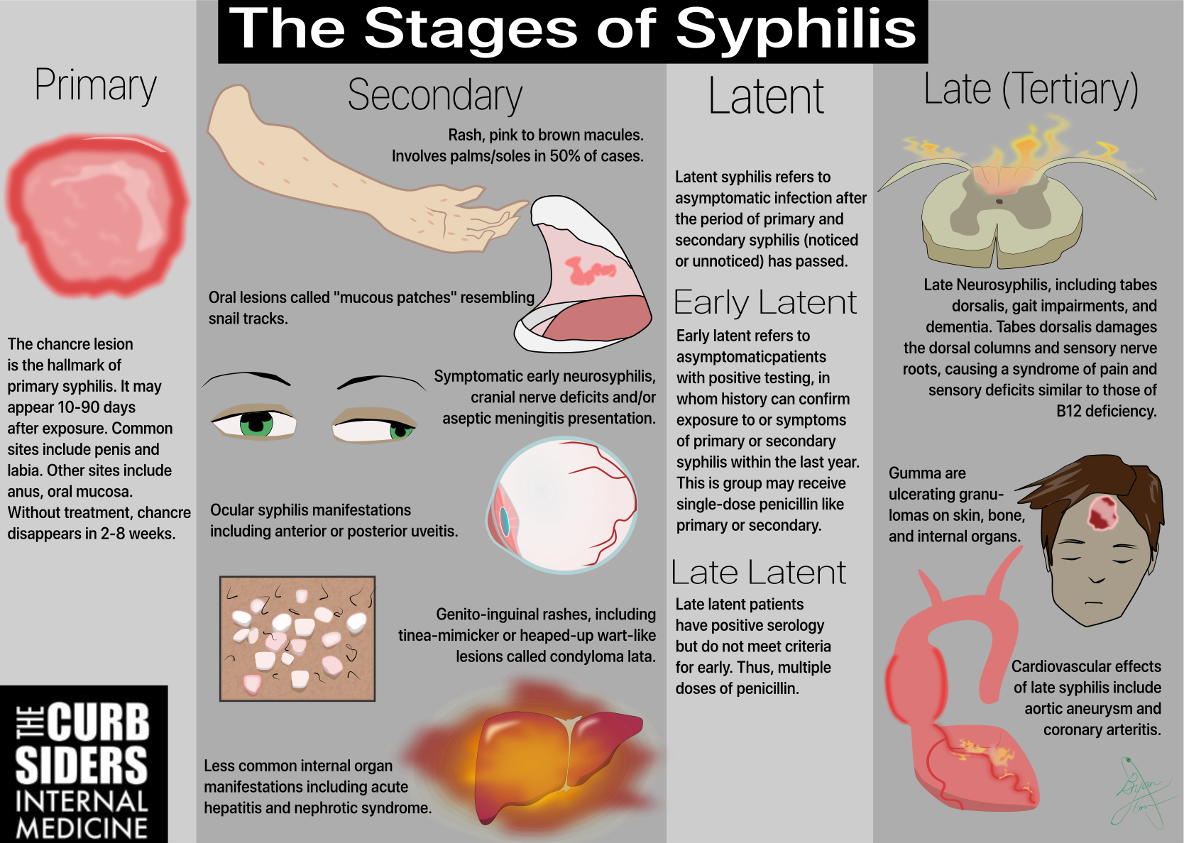 What Are The Three Stages Of Syphilis-9634